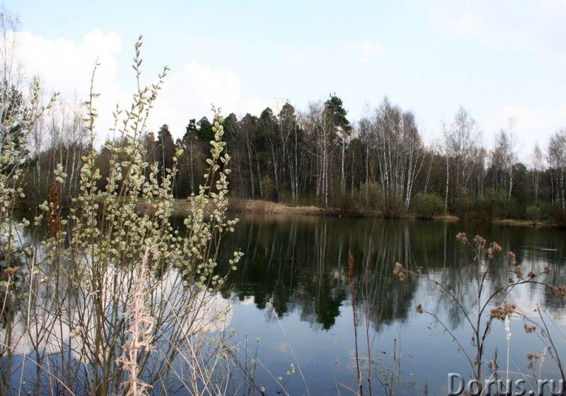 Недорого участок 20 соток 25 км от МКАД в д. Софьино - Земельные участки - Недорого участок 25 км от..., фото 5