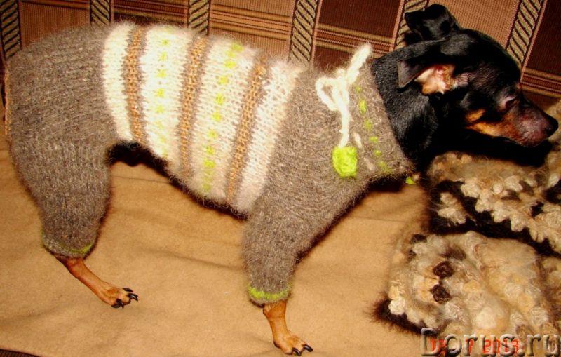Одежда для собак из собачьего пуха .Шерсть собачья - Собаки и щенки - Одежда для собак из собачьего..., фото 3