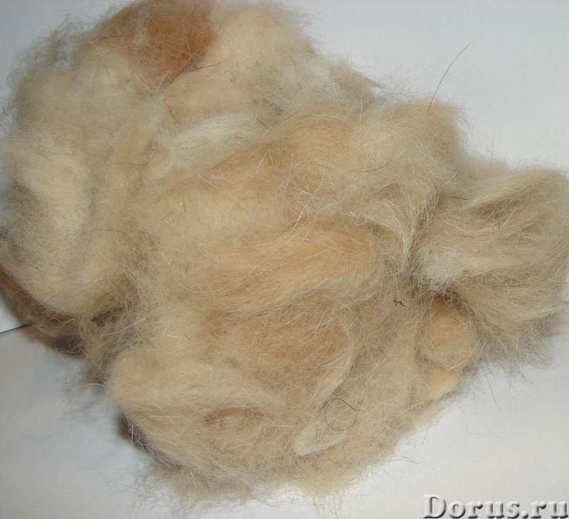 Пряжа целебная «Алабай2 280м100гр» одинарная из собачьей шерсти - Услуги народной медицины - Пряжа «..., фото 3