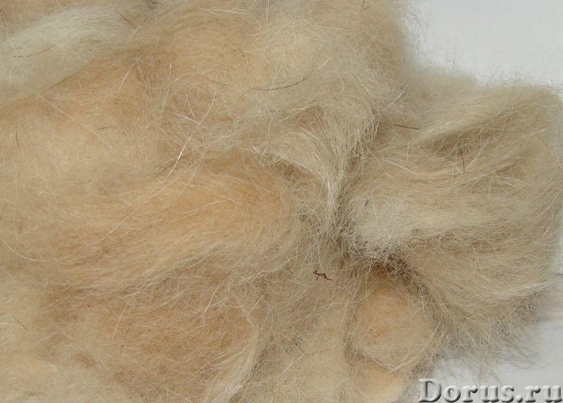 Пряжа целебная «Алабай2 280м100гр» одинарная из собачьей шерсти - Услуги народной медицины - Пряжа «..., фото 4