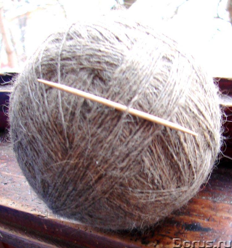 Пряжа целебная «Леонбергер» 390м100грамм одинарная нитка из собачьей шерсти - Услуги народной медици..., фото 6