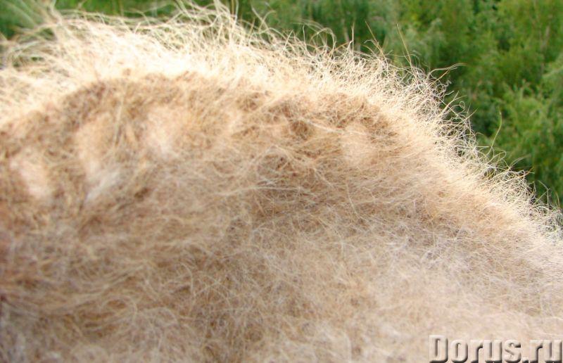 Пояс из собачьей шерсти арт№101п. Ортофен. Диклофенак. Спина лечение - Услуги народной медицины - По..., фото 9