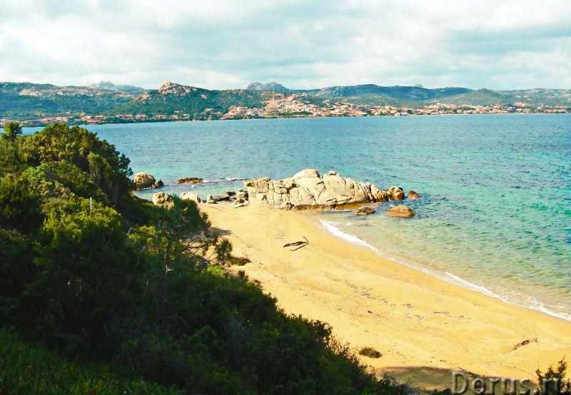 Люкс вилла на севере Сардинии, у моря, для отдыха - Недвижимость за рубежом - Люкс вилла на 1 линии..., фото 6
