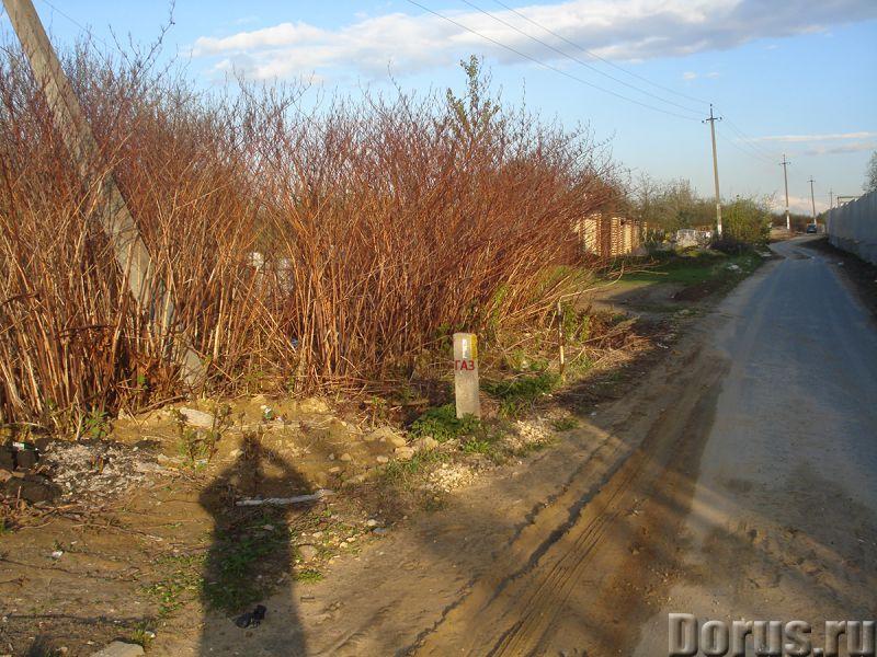 Участок 9 сот 18 км МКАД ПМЖ вся инфраструктура - Земельные участки - Участок 18 км от МКАД по Новор..., фото 3