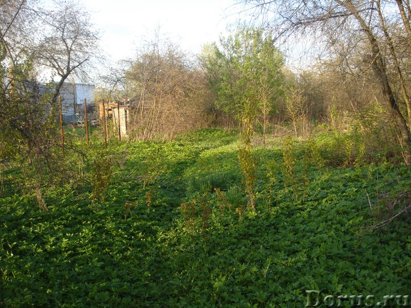 Участок 9 сот 18 км МКАД ПМЖ вся инфраструктура - Земельные участки - Участок 18 км от МКАД по Новор..., фото 7