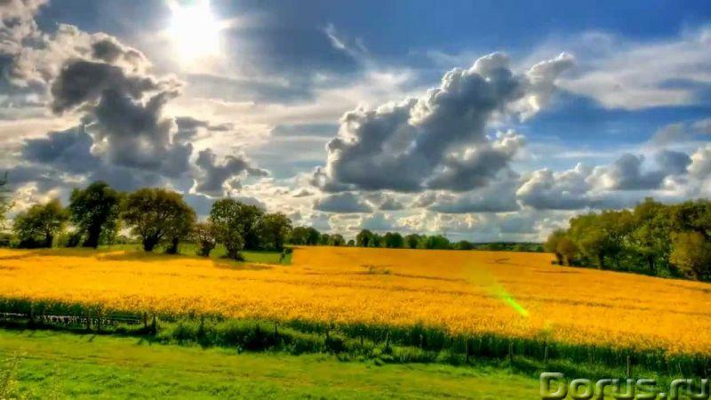 Продаю земельный участок 220 ГА - Земельные участки - Продаю земельный участок сельхозназначения пло..., фото 1
