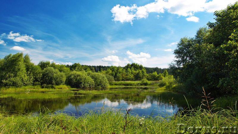 Продаю земельный участок 1 ГА (100 соток) - Земельные участки - Продаю земельный участок сельхозназн..., фото 1