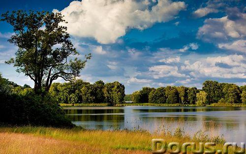 Продаю земельный участок 46,17 ГА - Земельные участки - Продаю земельный участок сельхозназначения п..., фото 1