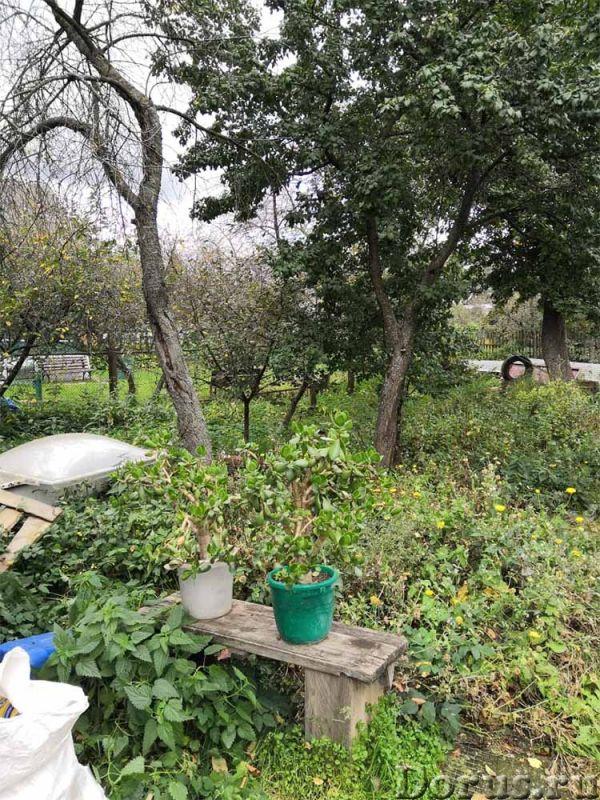 Уютный дом 90 квм на 16 сотках 20 км МКАД в д. Щеголево - Дома, коттеджи и дачи - Дом 90 квм на учас..., фото 2