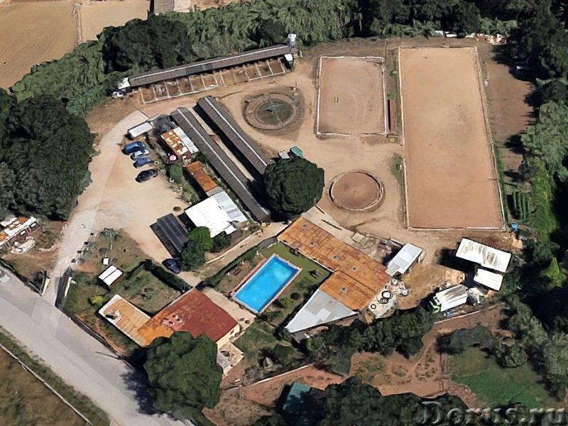 Испания. Конный клуб с домом для проживания и бассейном под Барселоной - Недвижимость за рубежом - К..., фото 10