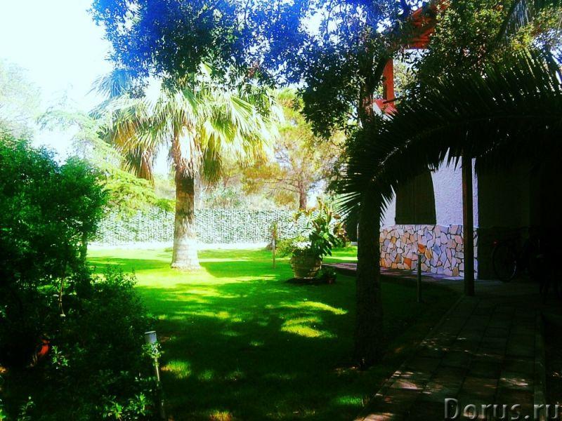 Красивая вилла, с садом, в аренд у на Сардинии - Недвижимость за рубежом - Красивая вилла, с садом..., фото 1