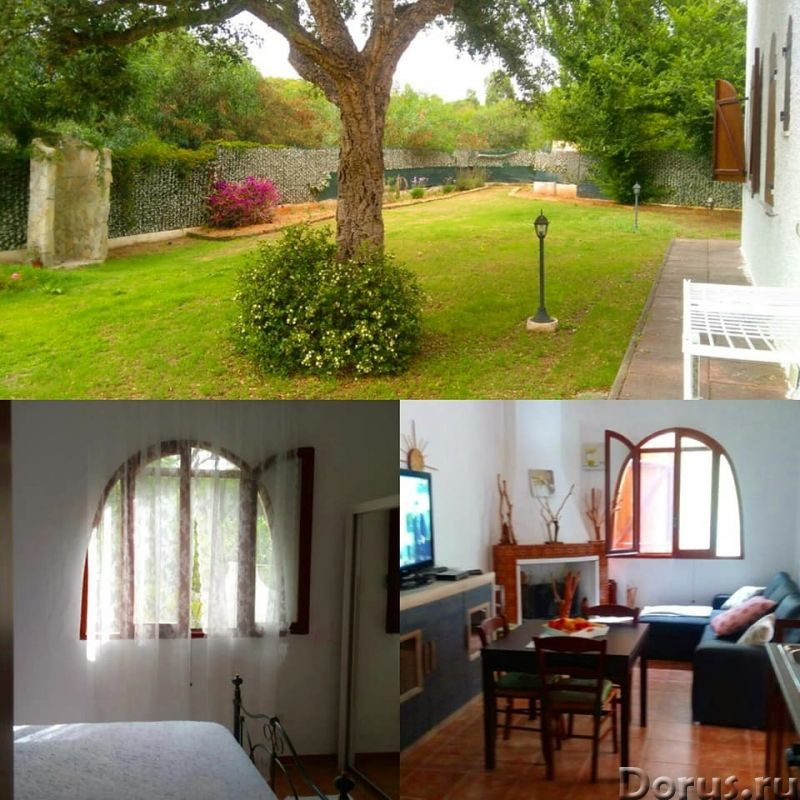 Красивая вилла, с садом, в аренд у на Сардинии - Недвижимость за рубежом - Красивая вилла, с садом..., фото 5