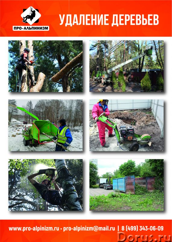 Аренда дробилки веток деревьев (измельчителя древесины) в Москве и МО - Лесная промышленность - Арен..., фото 2