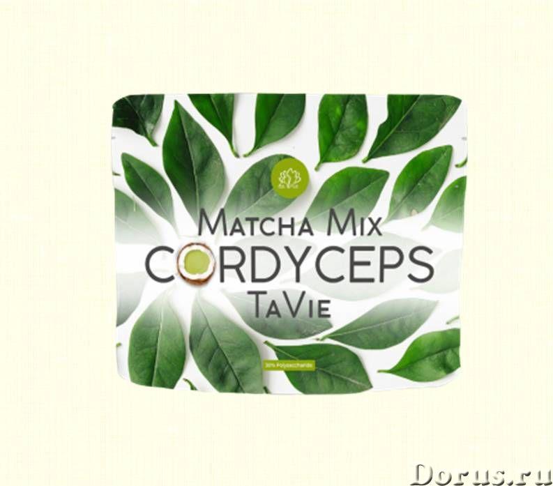 Чай Матча - Кордицепс, Matcha Mix CORDYCEPS TaVie, 120 гр - Прочее по продовольствию - Matcha Mix CO..., фото 1