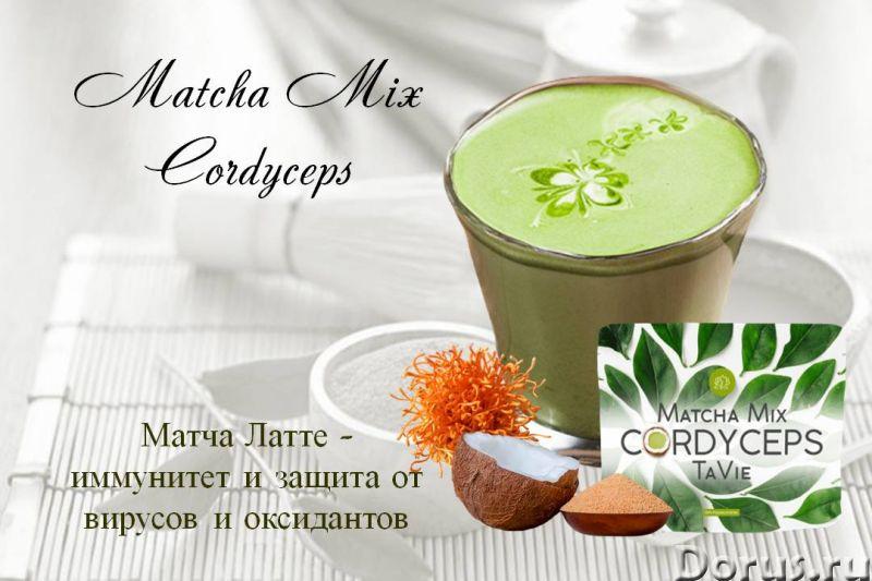 Чай Матча - Кордицепс, Matcha Mix CORDYCEPS TaVie, 120 гр - Прочее по продовольствию - Matcha Mix CO..., фото 2