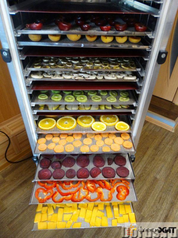 Инфракрасная сушилка (дегидратор) для сушки овощей, фруктов, лекарственного сырья, мясных и рыбных п..., фото 1