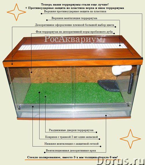 Аквариум для сухопутной черепахи - Товары для животных - Мы предлагаем красивые аквариумы для содерж..., фото 1