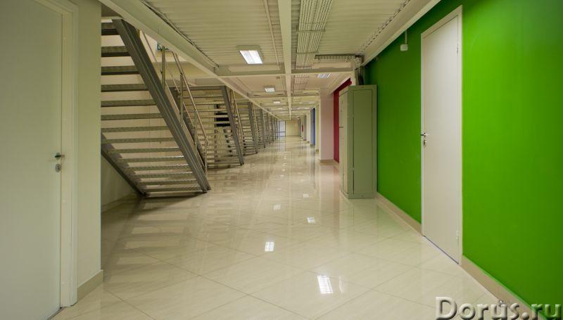 Сдам офисы в аренду в 7 мин. пешком от метро - Офисы - Сдам офисы в аренду в 7 мин. пешком от метро..., фото 2