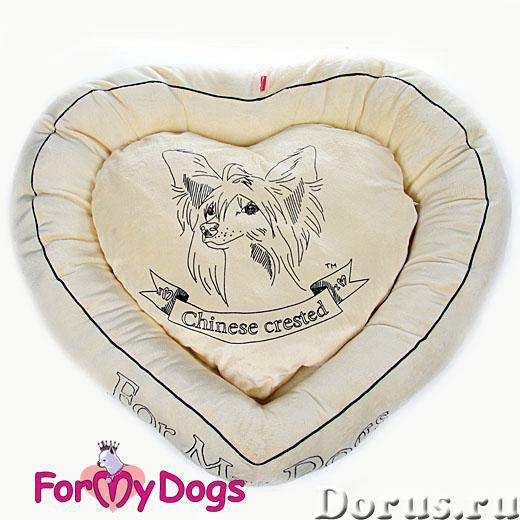 Одежда для собак - Товары для животных - ZooFashion - это интернет-магазин модной одежды и аксессуар..., фото 2