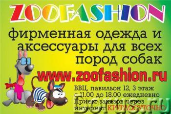 Одежда для собак - Товары для животных - ZooFashion - это интернет-магазин модной одежды и аксессуар..., фото 3