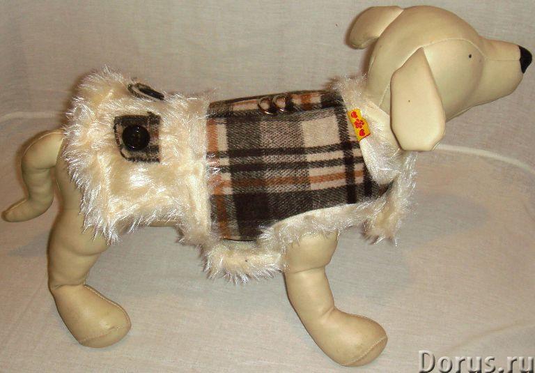 Одежда для собак - Товары для животных - ZooFashion - это интернет-магазин модной одежды и аксессуар..., фото 7