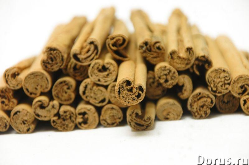 Настоящая цейлонская корица (Шри-Ланка) - Прочее по продовольствию - Предлагаем настоящую цейлонскую..., фото 1