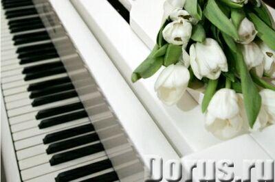 Дистанционные уроки сольфеджио, гармонии и теории музыки - Курсы - Предлагаю профессиональные заняти..., фото 1